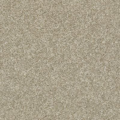 Shaw Floors Value Collections All Over It II Net Latte 00700_E9891