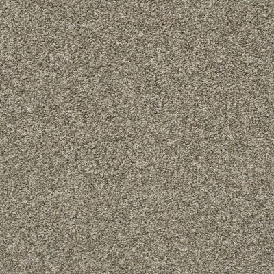 Shaw Floors Value Collections All Over It II Net Clay 00701_E9891