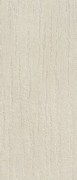 Shaw Floors Value Collections All The Way Net Stucco 00101_E9892
