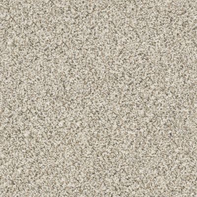 Shaw Floors Value Collections All Set I Net Goose Feather 00101_E9894