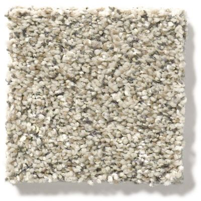 Shaw Floors Value Collections All Set I Net River Rock 00701_E9894