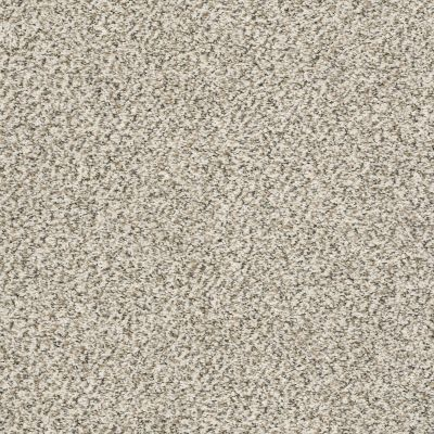 Shaw Floors Value Collections All Set II Net Goose Feather 00101_E9895