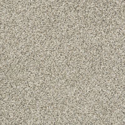 Shaw Floors Value Collections All Set II Net Atlantic Sand 00102_E9895