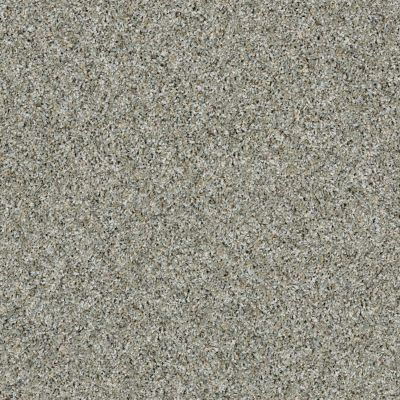 Shaw Floors Value Collections Orchard Picking Aqua Sky 00500_E9904