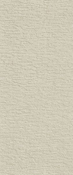 Shaw Floors Value Collections Dunkin' Stucco 00101_E9911