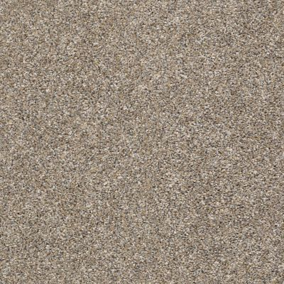 Shaw Floors Value Collections Frappe II Weathered 00710_E9913
