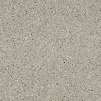 Shaw Floors Value Collections Main Stay 15′ Dove Tail 00501_E9921