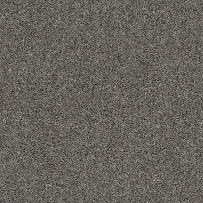 Shaw Floors Cabana Bay Solid Tree Bark 00523_E9954