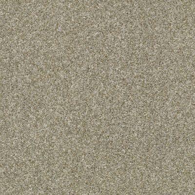 Shaw Floors Cabana Bay Tonal Pebble Creek 00135_E9955