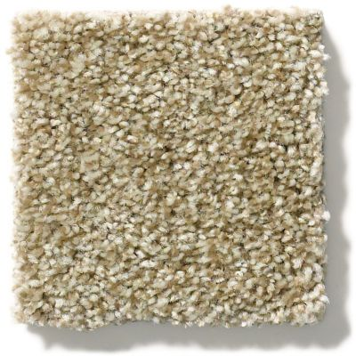 Shaw Floors Cabana Bay Tonal Dried Clay 00137_E9955