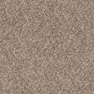 Shaw Floors Cabana Bay (b) Mesa 00152_E9956