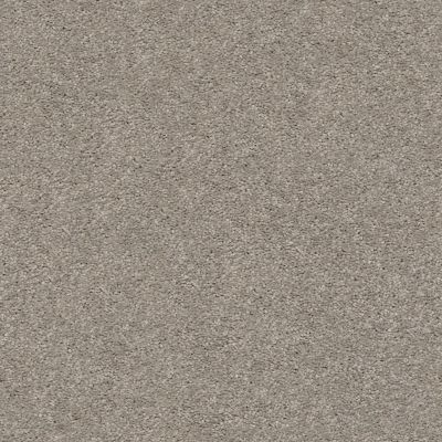 Shaw Floors Simply The Best Cabana Life Solid Perfect Taupe 00715_E9957
