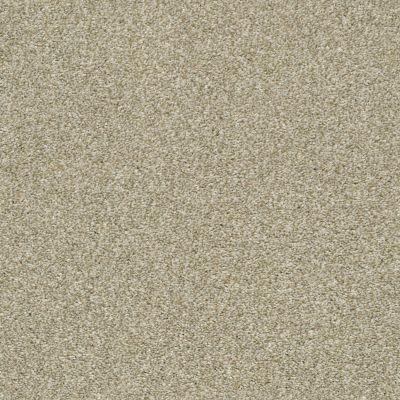 Shaw Floors Simply The Best Cabana Life (t) Wheat Field 00142_E9958