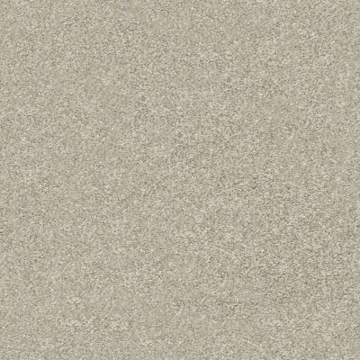Shaw Floors Attainable Desert Light 121T_E9965
