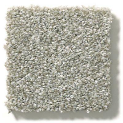 Shaw Floors Attainable Clay 122T_E9965
