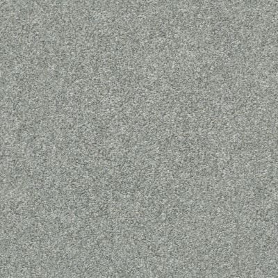 Shaw Floors Attainable Sterling 520T_E9965
