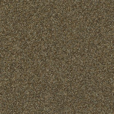 Shaw Floors Simply The Best It's All Right Caramel Pecan 00713_E9966