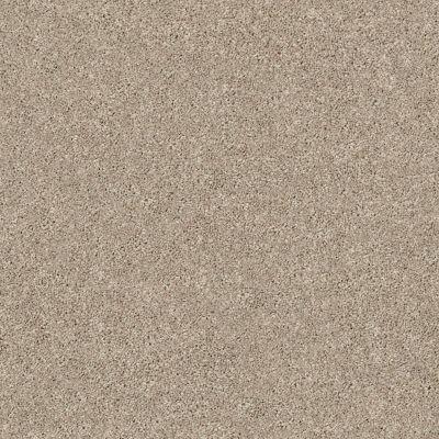 Shaw Floors Momentum I High Beam 121T_E9967
