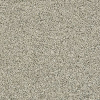 Shaw Floors Simply The Best Momentum I Mystical Cream 130A_E9967