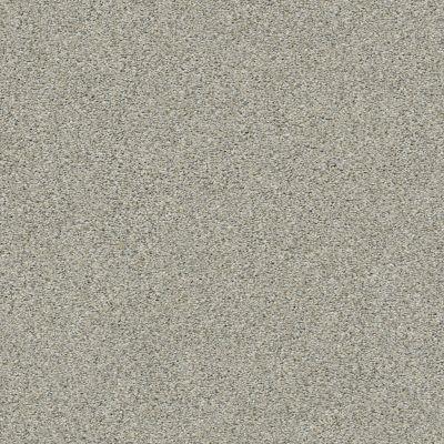 Shaw Floors Momentum I Moondance 131A_E9967