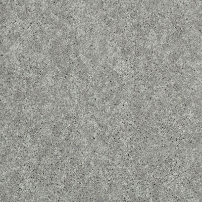 Shaw Floors SFA Unity I Aluminum 00500_EA021