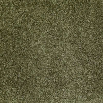 Shaw Floors SFA Ocean Pines 12′ Central Park 00301_EA041