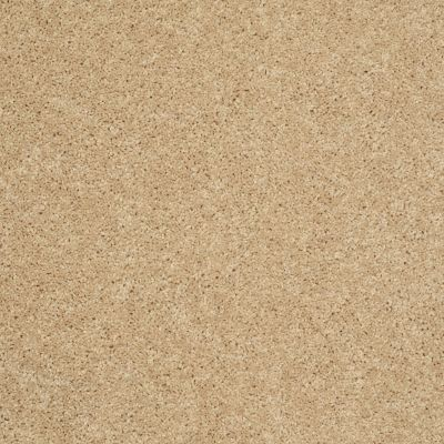 Shaw Floors SFA Drexel Hill I 12 Crumpet 00203_EA053