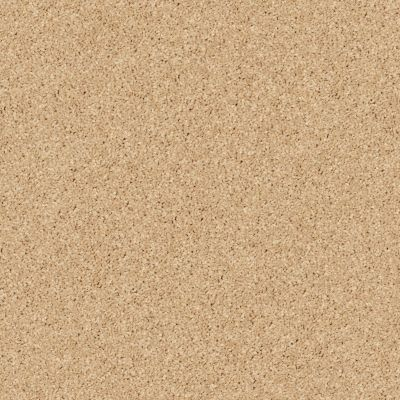 Shaw Floors SFA Drexel Hill I 12 Sun Beam 00240_EA053