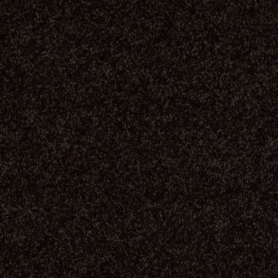 Shaw Floors SFA Drexel Hill II 12′ Armour 00502_EA054