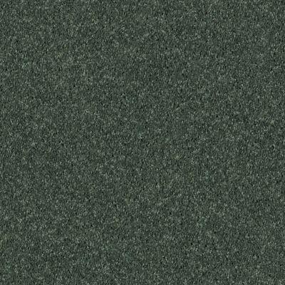 Shaw Floors SFA Drexel Hill III 12′ Going Green 00340_EA055