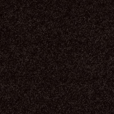 Shaw Floors SFA Drexel Hill III 12′ Armour 00502_EA055