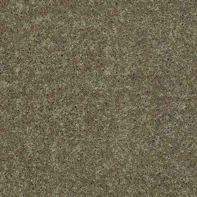 Shaw Floors SFA Drexel Hill III 15 Aloe 00300_EA056
