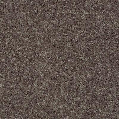 Shaw Floors SFA Drexel Hill III 15 Driftwood 00703_EA056