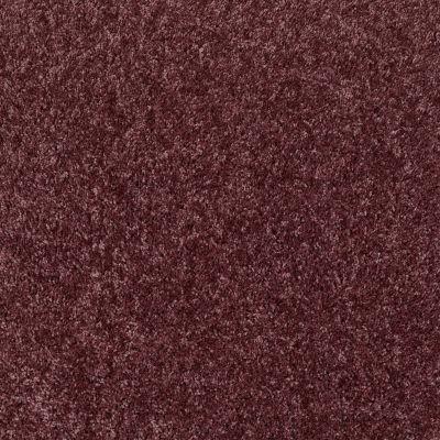 Shaw Floors SFA Ocean Pines 15′ Amethyst Sky 00900_EA059