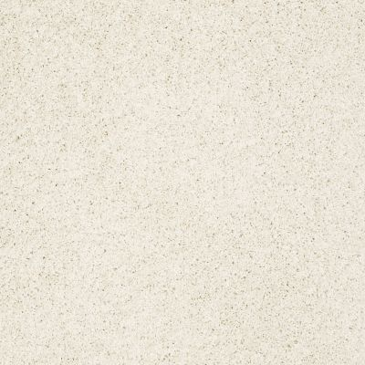 Shaw Floors Anso Colorwall Designer Twist Gold (s) Fine China 00104_EA090