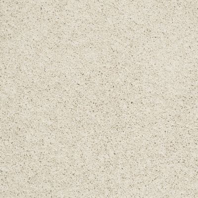 Shaw Floors Anso Colorwall Designer Twist Platinum (s) Cool Breeze 00106_EA091