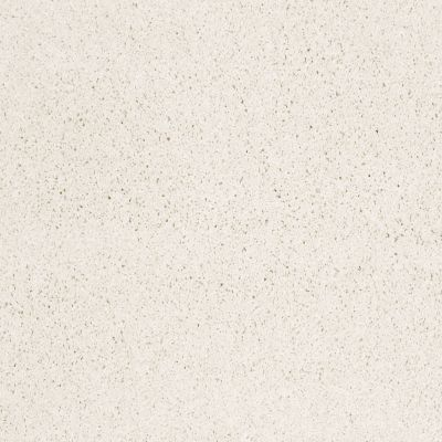 Shaw Floors Anso Colorwall Designer Twist Platinum (s) Snow Cap 00122_EA091