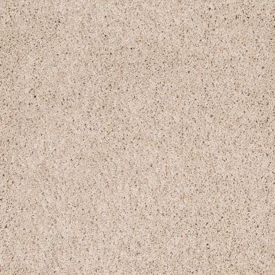 Shaw Floors Anso Colorwall Designer Twist Platinum (s) Dunes 00123_EA091