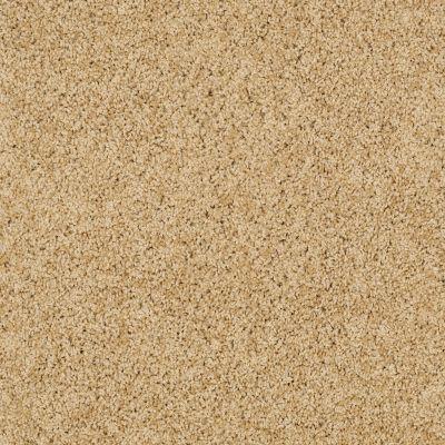 Shaw Floors SFA Loyal Beauty I Sun Shower 00200_EA162