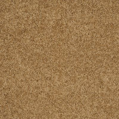 Shaw Floors SFA Loyal Beauty I Country Wheat 00701_EA162