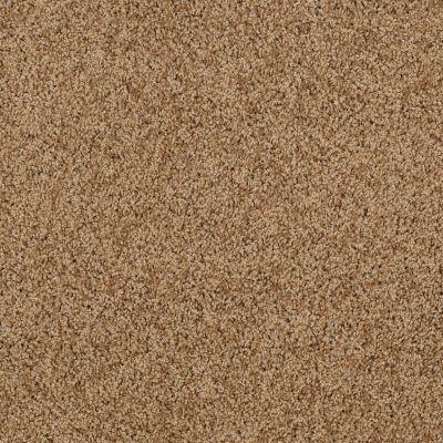 Shaw Floors SFA Loyal Beauty I English Toffee 00703_EA162