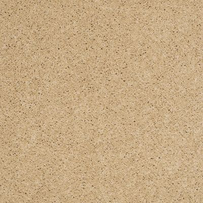 Shaw Floors SFA Loyal Beauty II Blonde Cashmere 00106_EA163