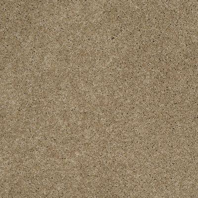 Shaw Floors SFA Loyal Beauty II Driftwood 00700_EA163