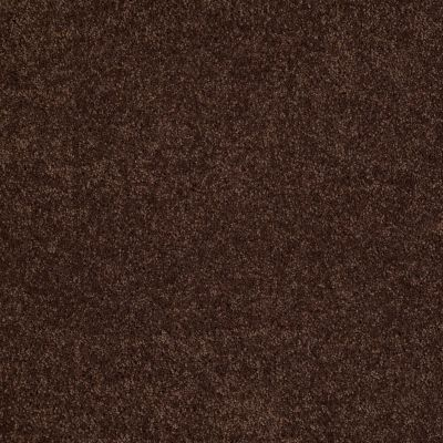Shaw Floors SFA Loyal Beauty II Apple Butter 00728_EA163