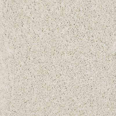 Shaw Floors SFA Loyal Beauty III Polar 00104_EA164