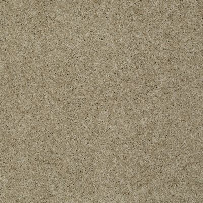 Shaw Floors SFA Loyal Beauty III Clay Stone 00108_EA164