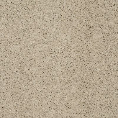 Shaw Floors SFA Loyal Beauty III Stucco 00129_EA164
