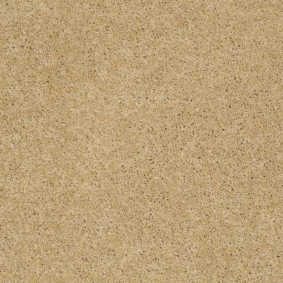 Shaw Floors SFA Loyal Beauty III Solar 00221_EA164
