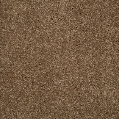 Shaw Floors SFA Loyal Beauty III Bonsai 00324_EA164