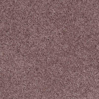 Shaw Floors SFA Loyal Beauty III Grape Fizz 00900_EA164